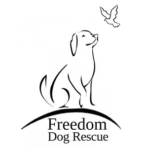 freedom-dog-rescue