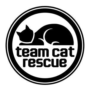 team-cat-rescue